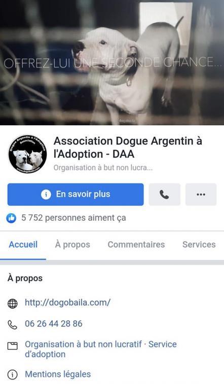 facebookDAA