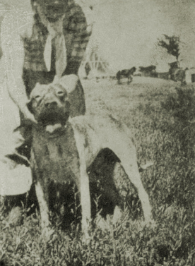 Ana i 1946 orig