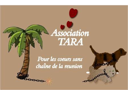 associationtara-1.jpg