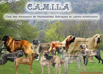 Camiladogobaila