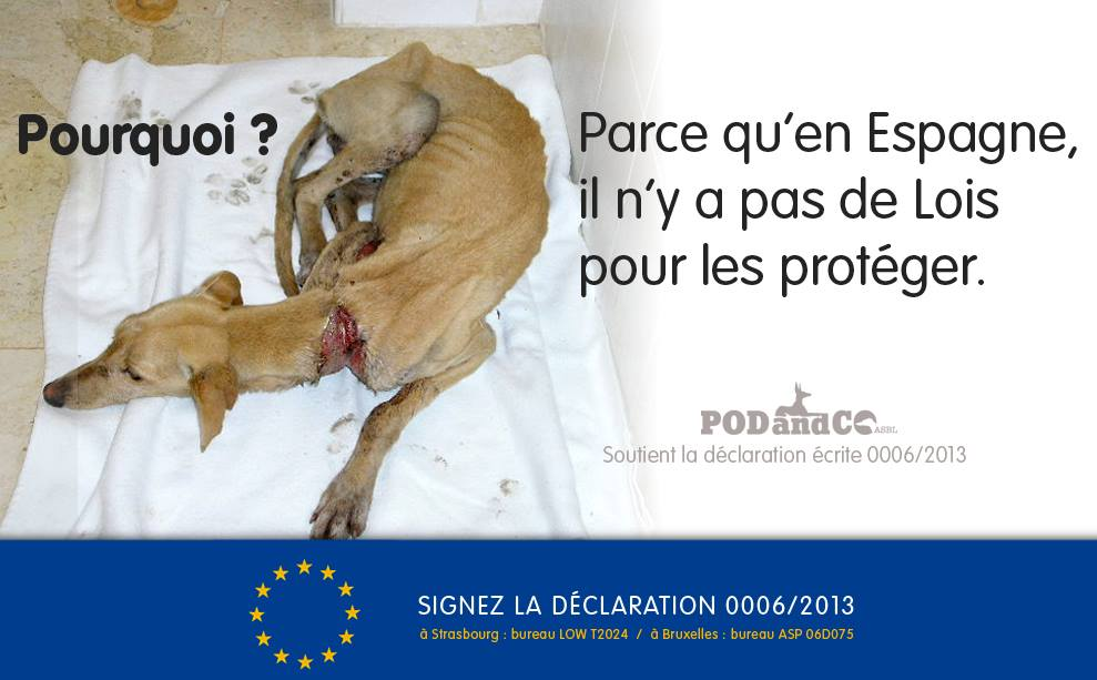 Galgoseespagnepetition
