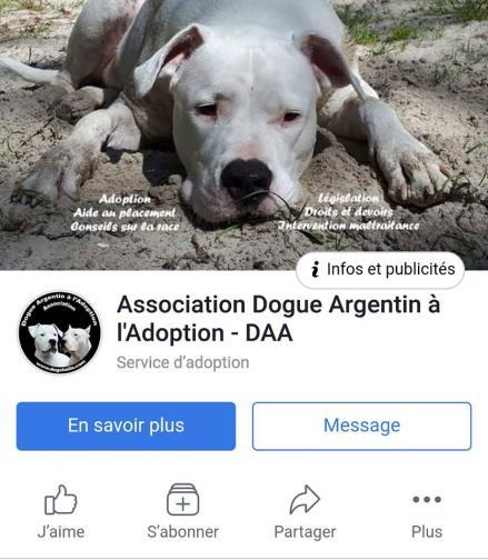 Pagefacebookdaa